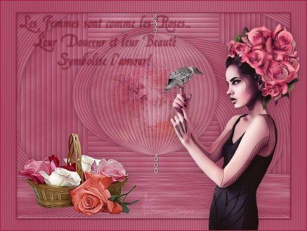 Belle comme une rose