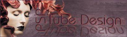 PSP Tybe Design